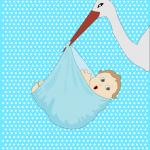 baby-boy-stork